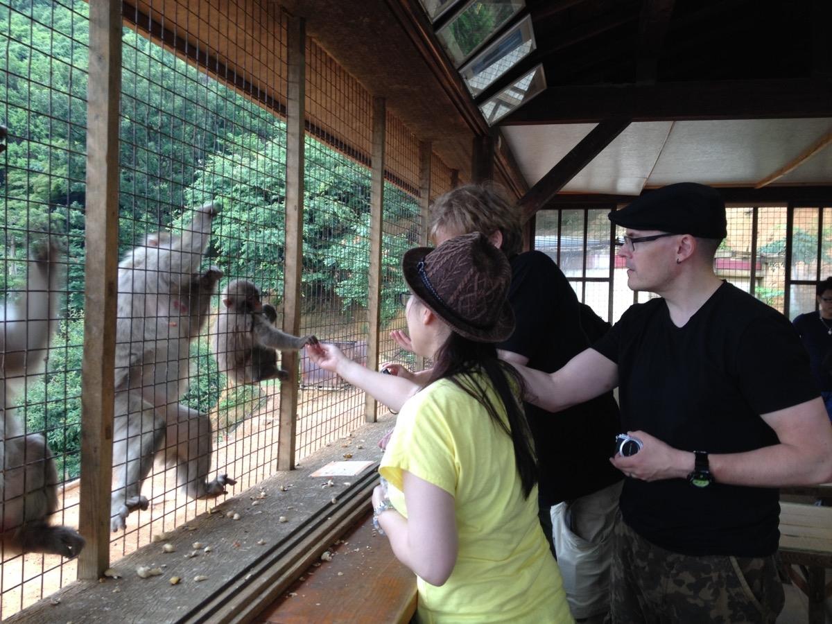 Hiromi antaa apinalle pähkinän.